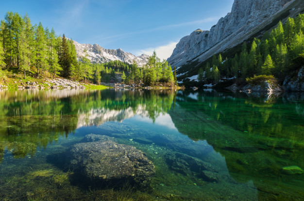 Things You Should Know About Slovenia Medical Tourism